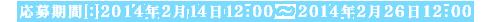 2013年2月14日12:00~2013年2月26日12:00
